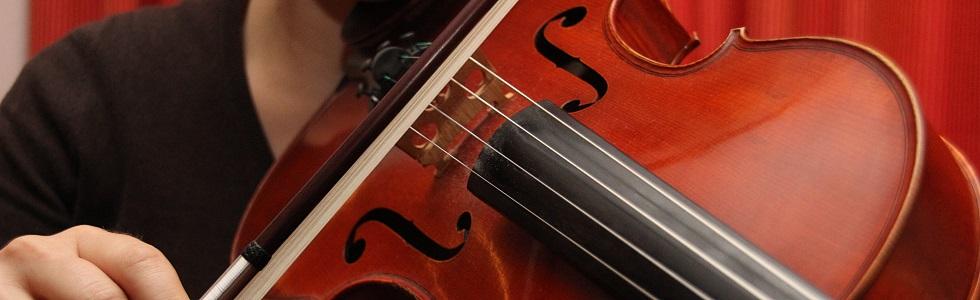 Geige spielen lernen in Oldenburg